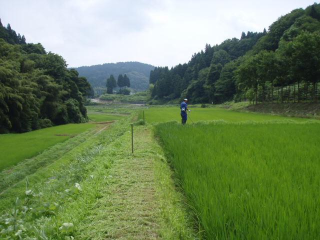 080720草刈06