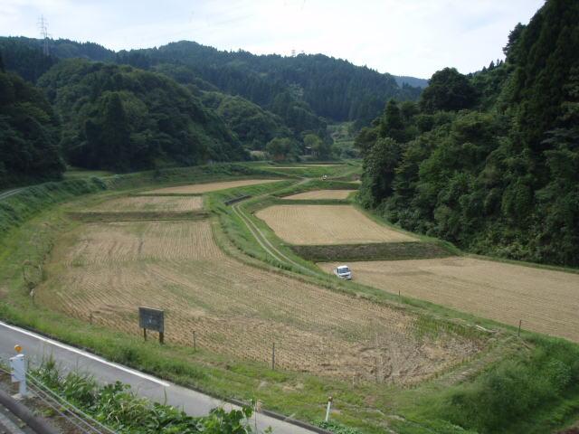 2008稲刈り後
