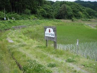 090607#1草刈り01