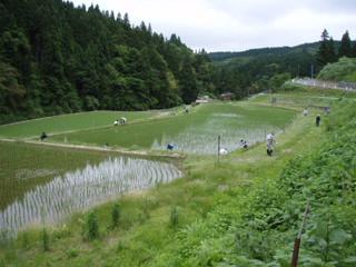 090607#1草刈り03