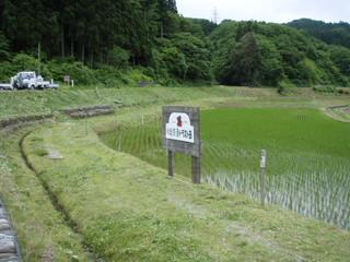 090607#1草刈り12