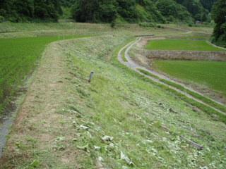 090607#1草刈り13