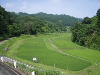 090705#2草刈り01