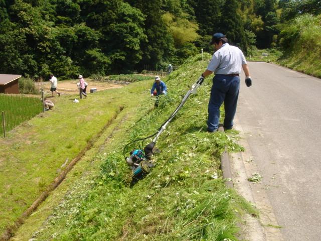 草刈070617-01
