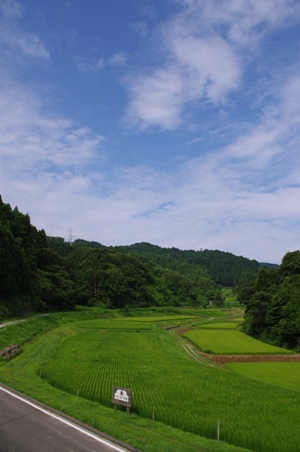 100808草刈り01