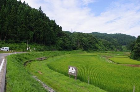 100808草刈り03