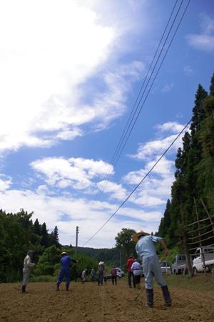 100808草刈り06