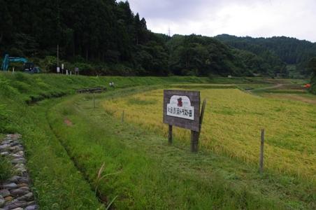 100919草刈り01