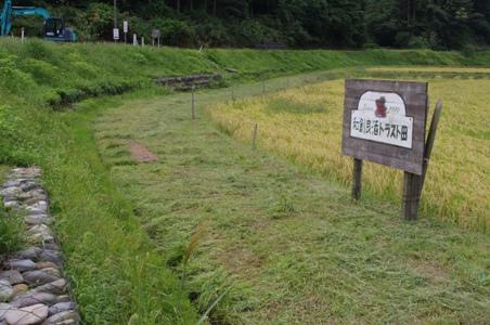 100919草刈り04