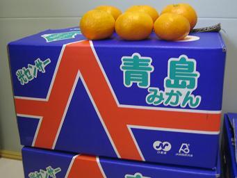 みかんと箱.JPG